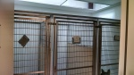 Three Quarantine pens at the Levelland Animal Shelter.  Note this is the only 3 pens for Quarantine in the Shelter.